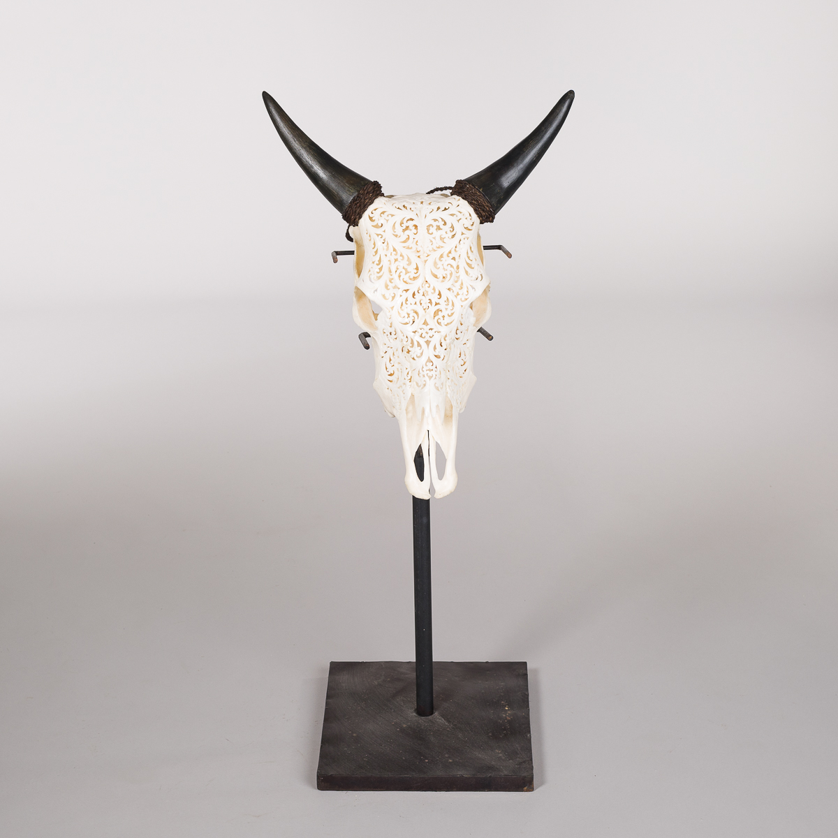 Bøffel ku hode med utskjæringer-0